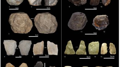 Ancient ools found at the site, including cores and flakes. Image Credit : M. Sahnouni et al., 2018.