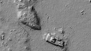 LiDAR imagery showing ancient Maya structures beneath dense layers of vegetation.