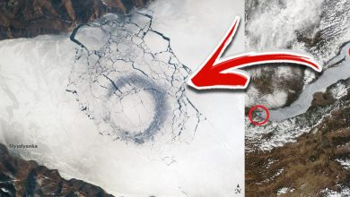The mysterious ice circles on Lake Baikal, as seen from space. Image Credit: NASA.