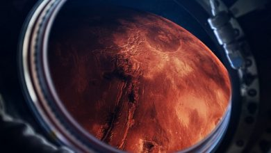 An artists illustration of a spacecraft visiting Mars. Shutterstock.