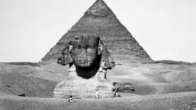 The Pyramid of Cheops and the Sphinx, photograph by Antoine Beato ca. 1880. Shutterstock.