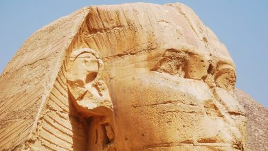 The face of the Great Sphinx of Giza. Shutterstock.
