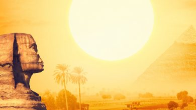 An illustration depicting the Sphinx, the sun and the pyramid. Shutterstock.