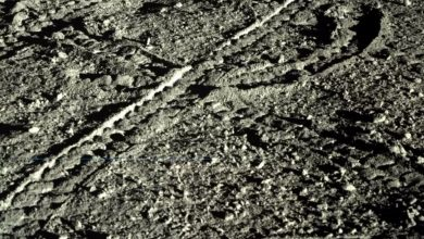 Rover tracks of Yutu-2. Image Credit: China Lunar Exploration Project.