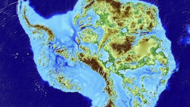 An image showing what Antarctica looks like without snow and ice. Image Credit: Mathieu Morlighem / UCI.