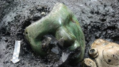 An image of the green serpentine mask discovered at the base of the Pyramid of the Sun in Teotihuacan. Image Credit: INAH.