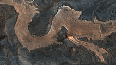 "A HiRISE image of a ""dragon"" on the surface of Mars. The image actually shows the Melas Chamnsa region on Mars, an unusually blocky deposit composed of light-toned blocks in a darker matrix. Image Credit: HiRISE / NASA."