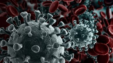 An artists rendering of Coronavirus. Shutterstock.