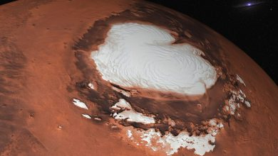 An artist's rendering of Mars' Ice Caps. Shutterstock.