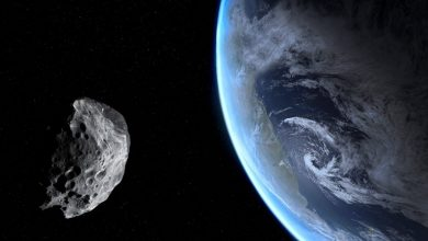 An asteroid in space and Earth. Shutterstock.