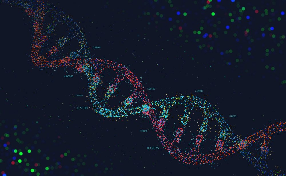 An illustration of the DNA helix. Shutterstock.