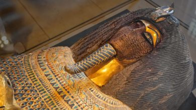 An Image of an ancient Egyptian mummy. Shutterstock.