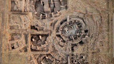 An Aerial/overhead view of An aerial photograph of the stone circles at Göbekli Tepe.