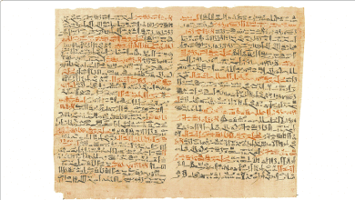 The Edwin Smith Papyrus is the oldest known medical text on traumas. Credit: Research Gate
