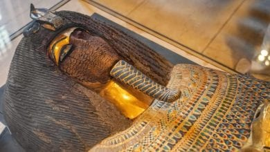 An Ancient sarcophagus in The Museum of Egyptian Antiquities. Credit: Shutterstock.