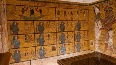 The Valley of the Monkeys got its name because of this wall of monkey paintings in one of the tombs. Credit: 4Travel