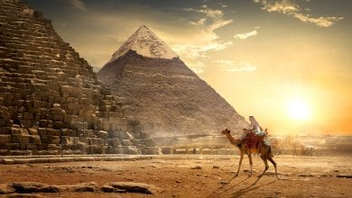 Ancient Egyptians used cannabis for a variety of purposes - from medical to religious. Credit: Shutterstock