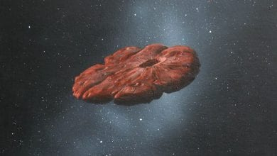 This is a painting by scientists William K. Hartmann based on the theory that Oumuamua may have had a flat pancake disk shape. Credit: William Hartmann