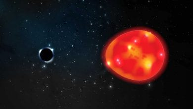 Artist's impression of the possible closest black hole to Earth and its red giant star companion. Credit: Ohio State University / Lauren Fanfer