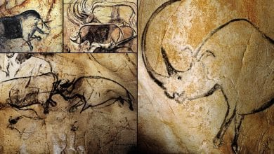 Cave paintings from the Chauvet Cave in France. Did prehistoric painters paint at such depths because the lack of oxygen made them hallucinate? Credit: Bradshaw Foundation