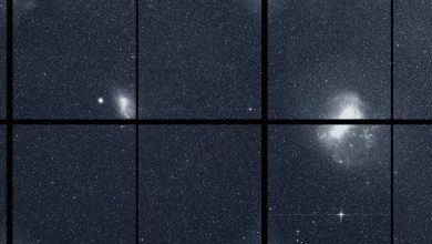 Photo of Scientists Believe TESS will discover ten worlds like Earth in two years
