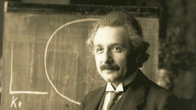 A photograph of Albert Einstein.