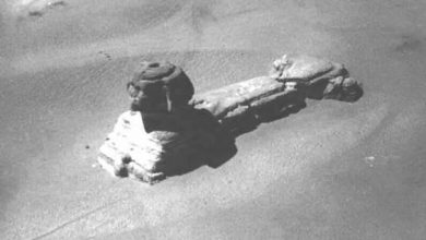 Image of the Sphinx before it was completely excavated. Early 19th century.