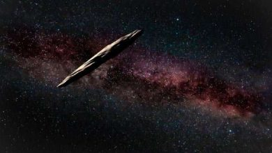 Photo of Harvard Astronomer Still Believes an Alien Spacecraft Zipped Past Earth
