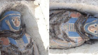 Photo of Eight Ancient Mummies Discovered in Ancient Egyptian Pyramid