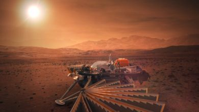 Photo of NASA's Newest Mars Lander is set to Touch Down on Mars in a matter of Days