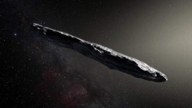 Photo of Harvard Scientists Who Suggest 'Oumuamua is an Alien Spacecraft not Backing Down
