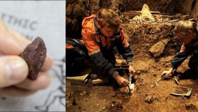 Photo of Scientists Find 'Ancient Pencil' Believed to date Back 50,000 Years