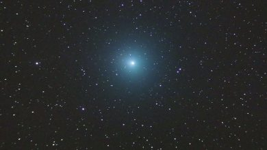 Photo of Here's How to Spot 'Christmas Comet' as it Zips past Earth