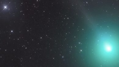 Photo of Massive 1.2-Kilometer-Wide Comet Visible in the Night Sky