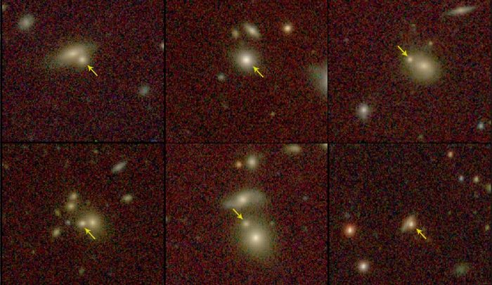 Images showing the multra-compact massive galaxies. Image Credit: Buitrago et al, 2018.