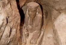 Photo of Buried Sphinx Uncovered by Archaeologists at Kom Ombo Temple Near Aswan