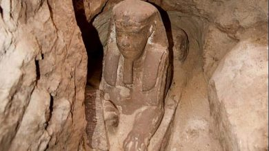 The Sphinx uncovered near Aswan.
