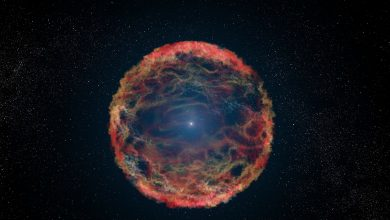 Photo of A Supernova Caused a Mass Extinction on Earth 2.6 Million Years Ago