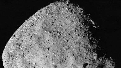 Photo of NASA Spacecraft Finds Evidence of Water on Asteroid Bennu