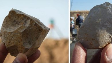Photo of Stone Tools Date Early Humans in North Africa to 2.4 Million Years Ago