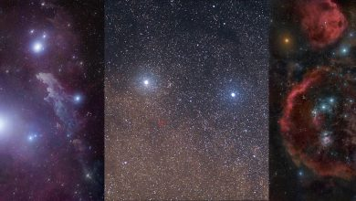 Photo of Here Are 15 of the Brightest Stars in the Night Sky