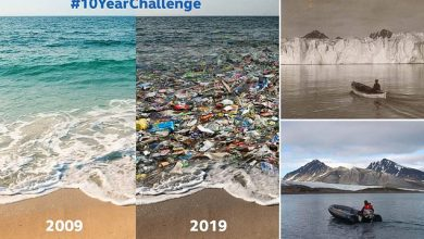 Photo of Earth's '10YearChallenge': The Only 10-Year-Challenge That Matters