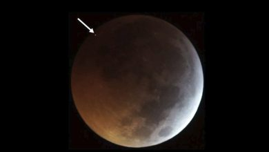 Photo of Something Impacted the Moon During the Blood Moon Eclipse and People Filmed it