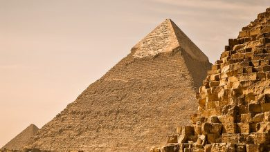 Photo of How the Ancient Egyptian Economy Laid the Groundwork for Building the Pyramids