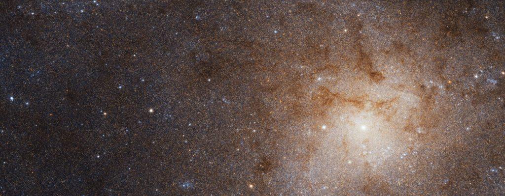 Image Credit: NASA, ESA, and G. Bacon (STScI).