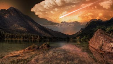 Photo of The Asteroid That Brought an End to The Dinosaurs Unleashed a Global Tsunami