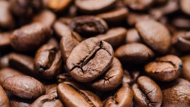 Photo of Coffee: 60% of Wild Species are at Risk of Extinction due to Climate Change