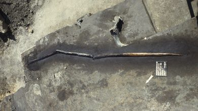 Photo of Neanderthals Were Sophisticated Enough to Craft 'Advanced' Spears