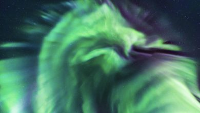 Photo of A Dragon-Shaped Aurora has Just Been Photographed in Iceland