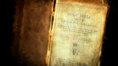 Photo of Here Are 8 Scientific 'Facts' Mentioned in the Bible
